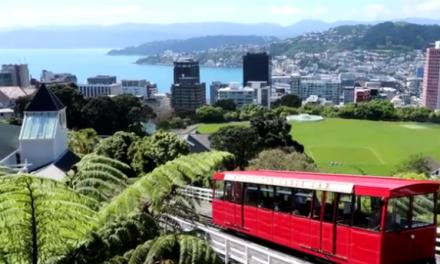 Découvrez la Nouvelle-Zélande avec Mehdi Vlog