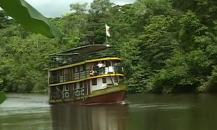 [Amazonie] Le Selva Viva c'est quoi ?
